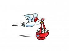oiseau volant portant bonnet frigien